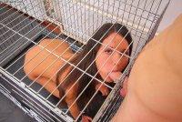 Бесплатные интим фотокарточки от студии Defiled18 с русской шалавой Abby